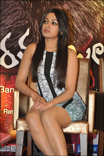 Catherine Tresa Pos at Iddarammayilatho Platinum Disc Function  0016.jpg