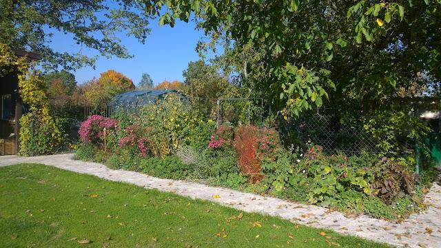 Staudenbeet im Herbst (c) by Joachim Wenk