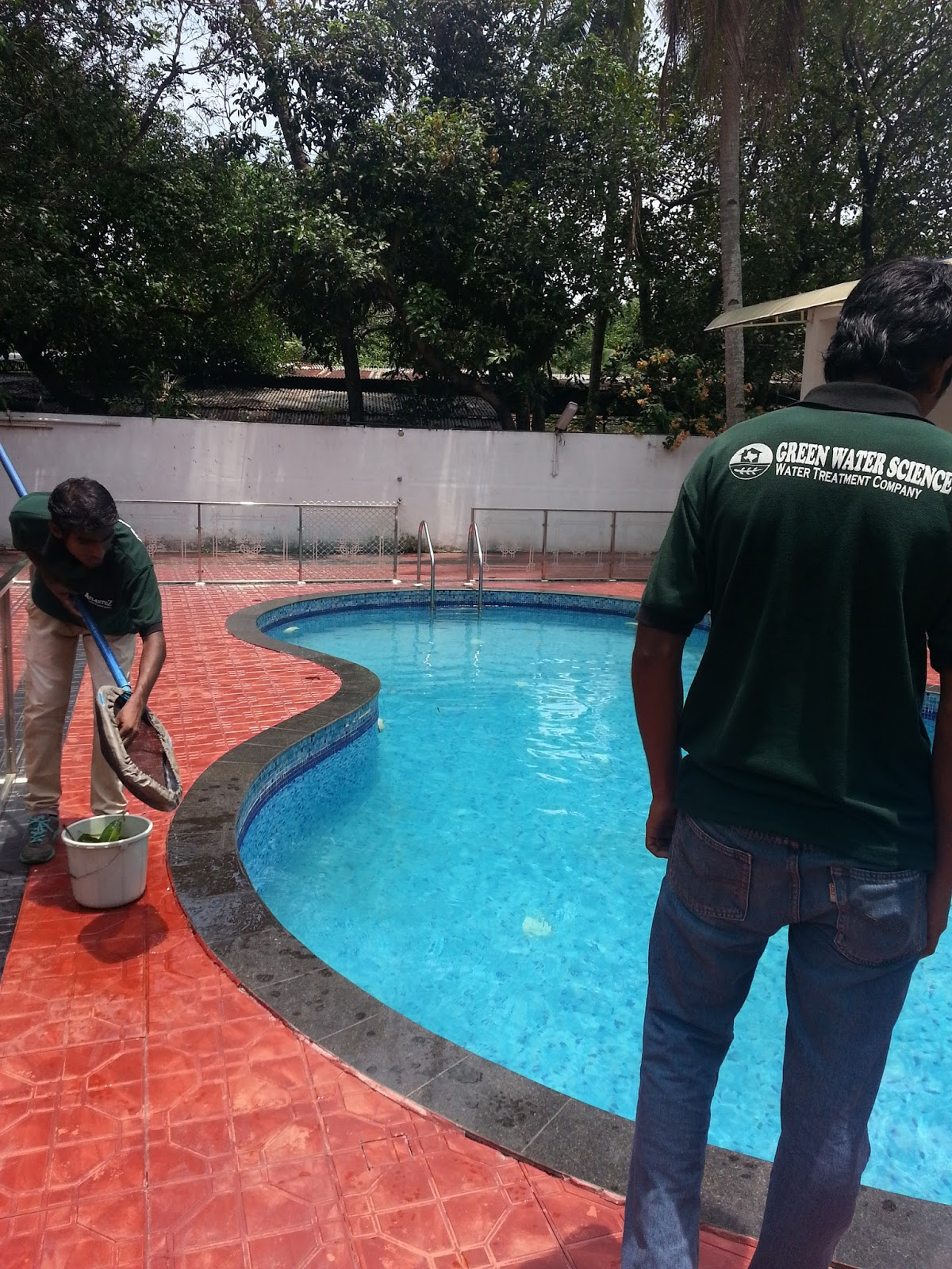 Swimming Pools In Kerala Construction Of House Ponds And
