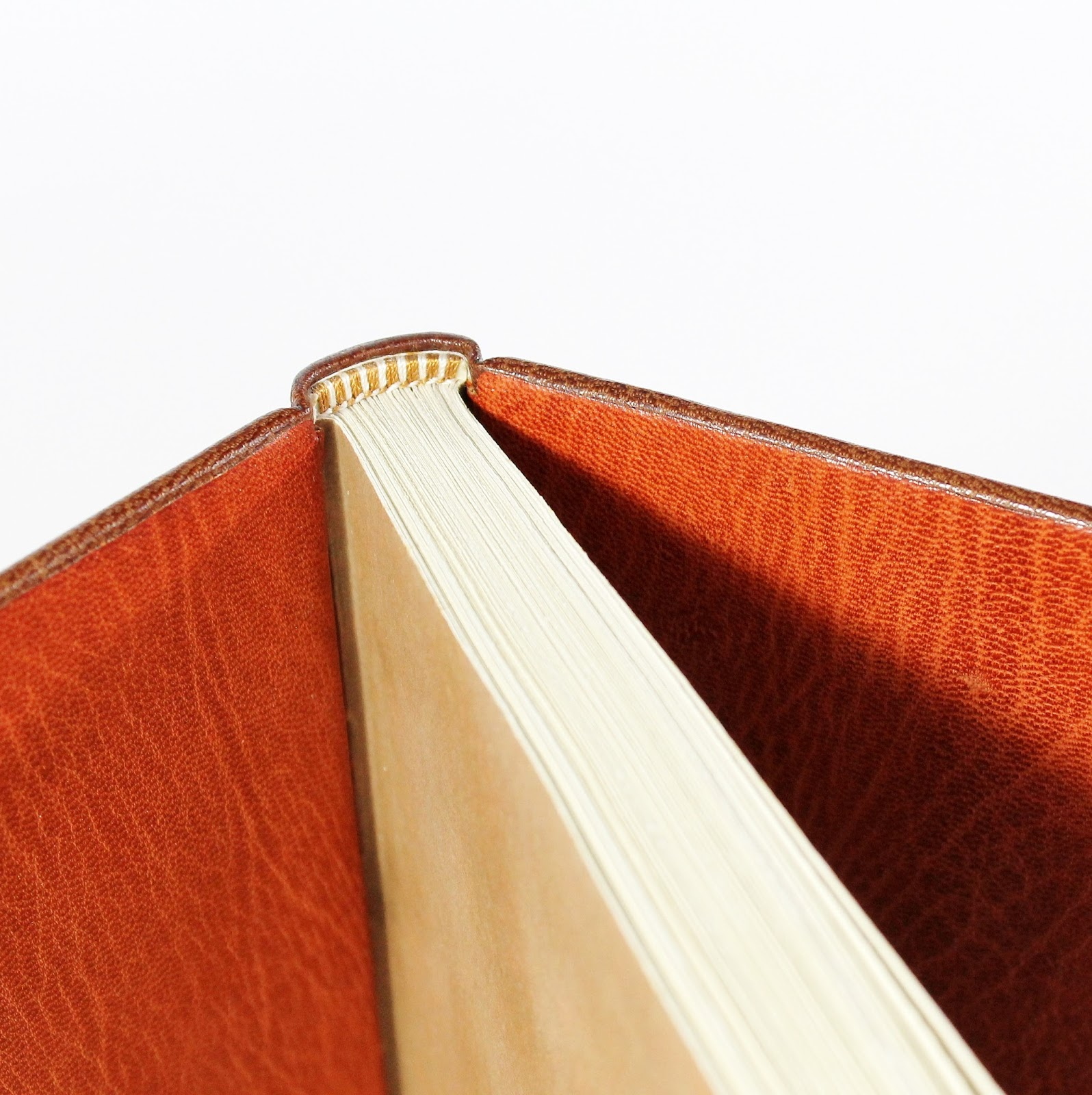 How did i become a bookbinder part 2 paperiaarre full leather binding with leather doublures kaija rantakari paperiaarre solutioingenieria Gallery