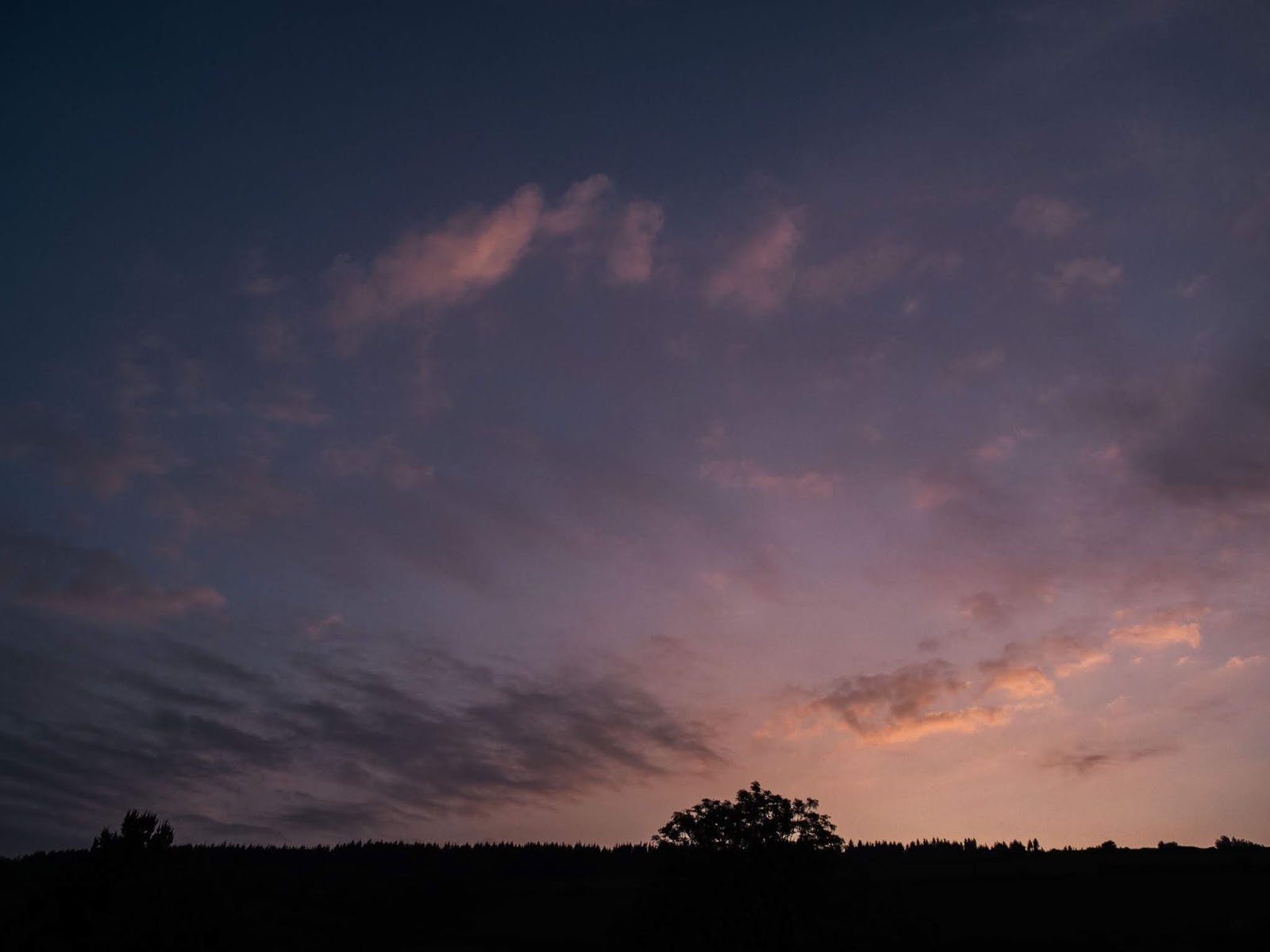 Wispy pink sunset clouds on a blue sky.