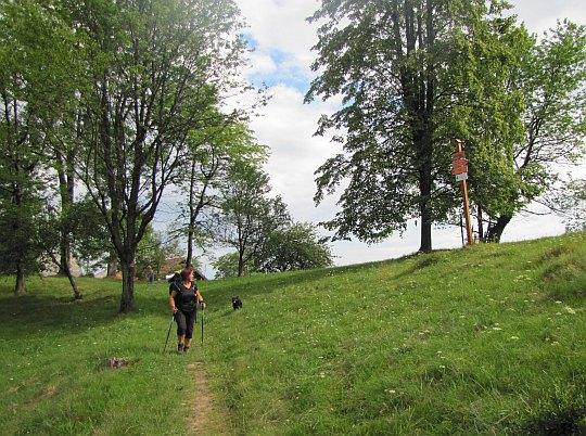 Kordowiec (763 m n.p.m.).