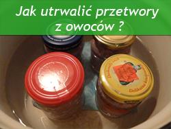 http://psprzelotem.blogspot.com/2015/09/dzikie-rosliny-jadalne-w-przetworach.html