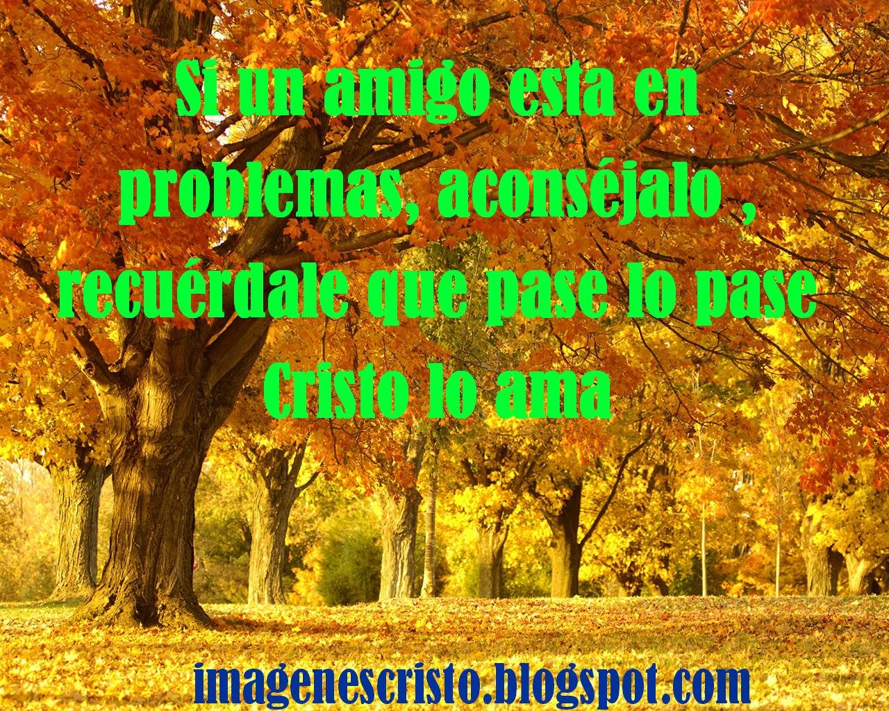 Descargar Imagenes Cristianas: Banco De Imagenes: Bajar Imágenes