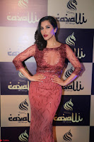 Actress Sophie Choudry in Transparent Red Dress (13).JPG