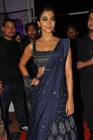 Pooja Hegde choli saree at DJ Duvvada Jaggannadham music launch ~  Exclusive 131.jpg