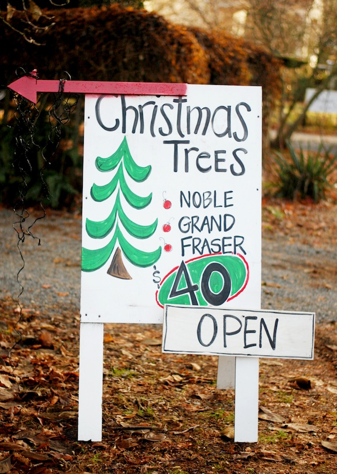 Langley Christmas Tree farm
