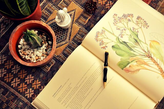 libro de botanica, dibujos de mary annie kunkel