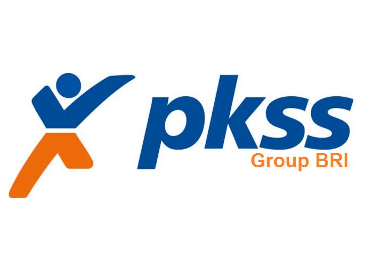 Hasil gambar untuk pkss logo