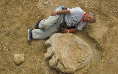 Jejak Kaki Dinosaurus Raksasa ditemukan di Mongolia