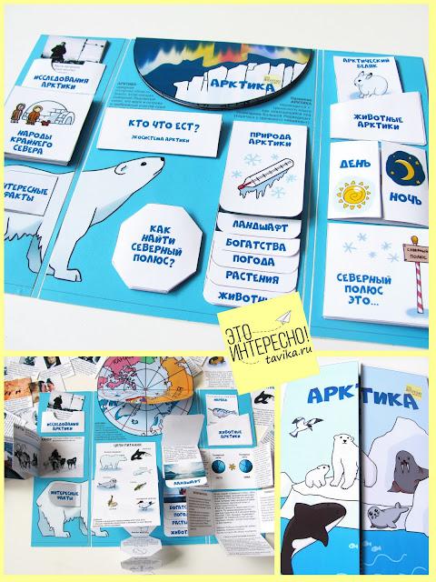 Лэпбук Арктика и Северный полюс