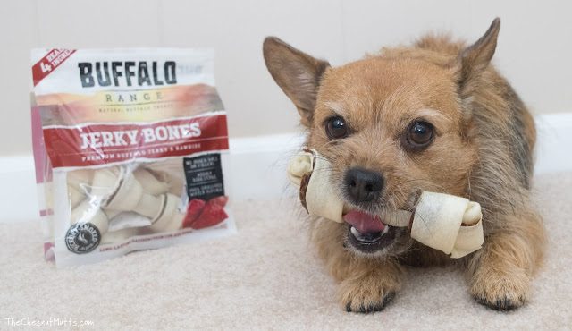 Jada with Buffalo Range Jerky Bones