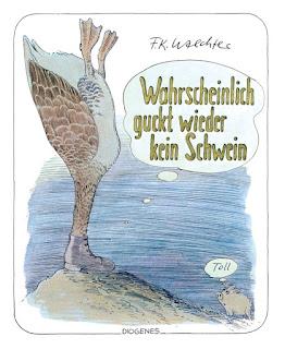 F. K. Waechter: Wahrscheinlich guckt wieder kein Schwein. Diogenes Verlag