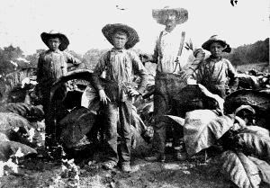 White Sharecroppers During the Great Depression