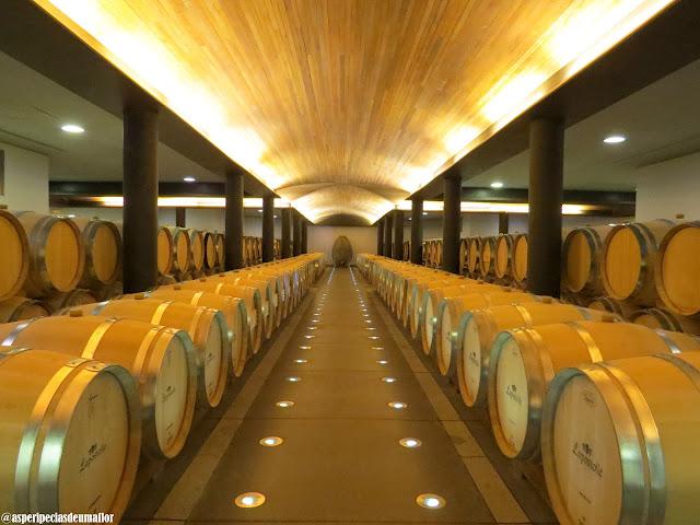 Vinícola Lapostolle - visita e degustação dos vinhos - Não Pira, Desopila