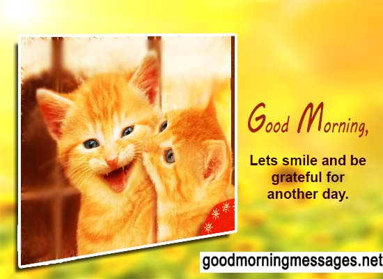 Funny good morning greetings m4hsunfo