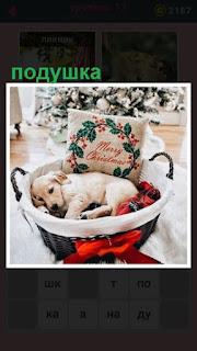 в корзине рядом с подушкой спит собака
