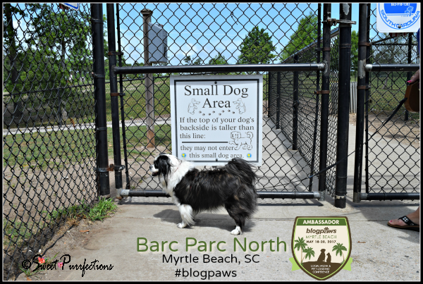 Bandit and Small Dog Area sign at Barc Parc North