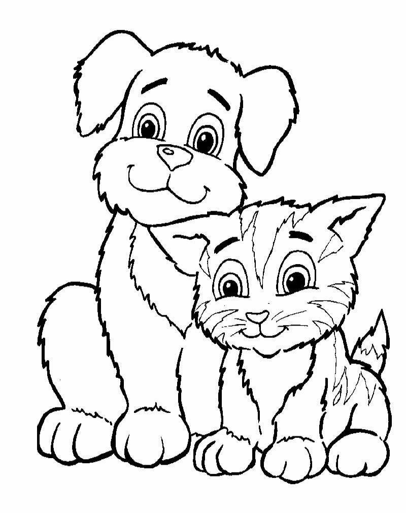 Gambar Mewarnai Anak Paud Kumpulan Gambar Hewan Kucing Mewarnai