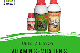 Vitamin Agar Sapi Dokoh Makan