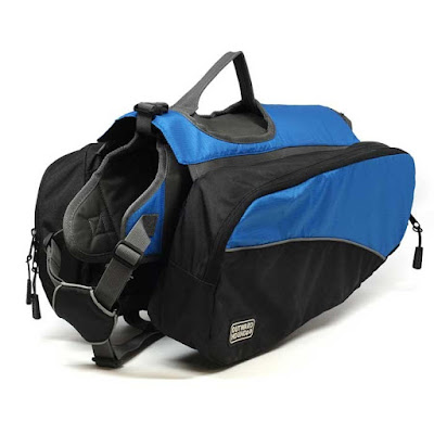 most popular dog backpack