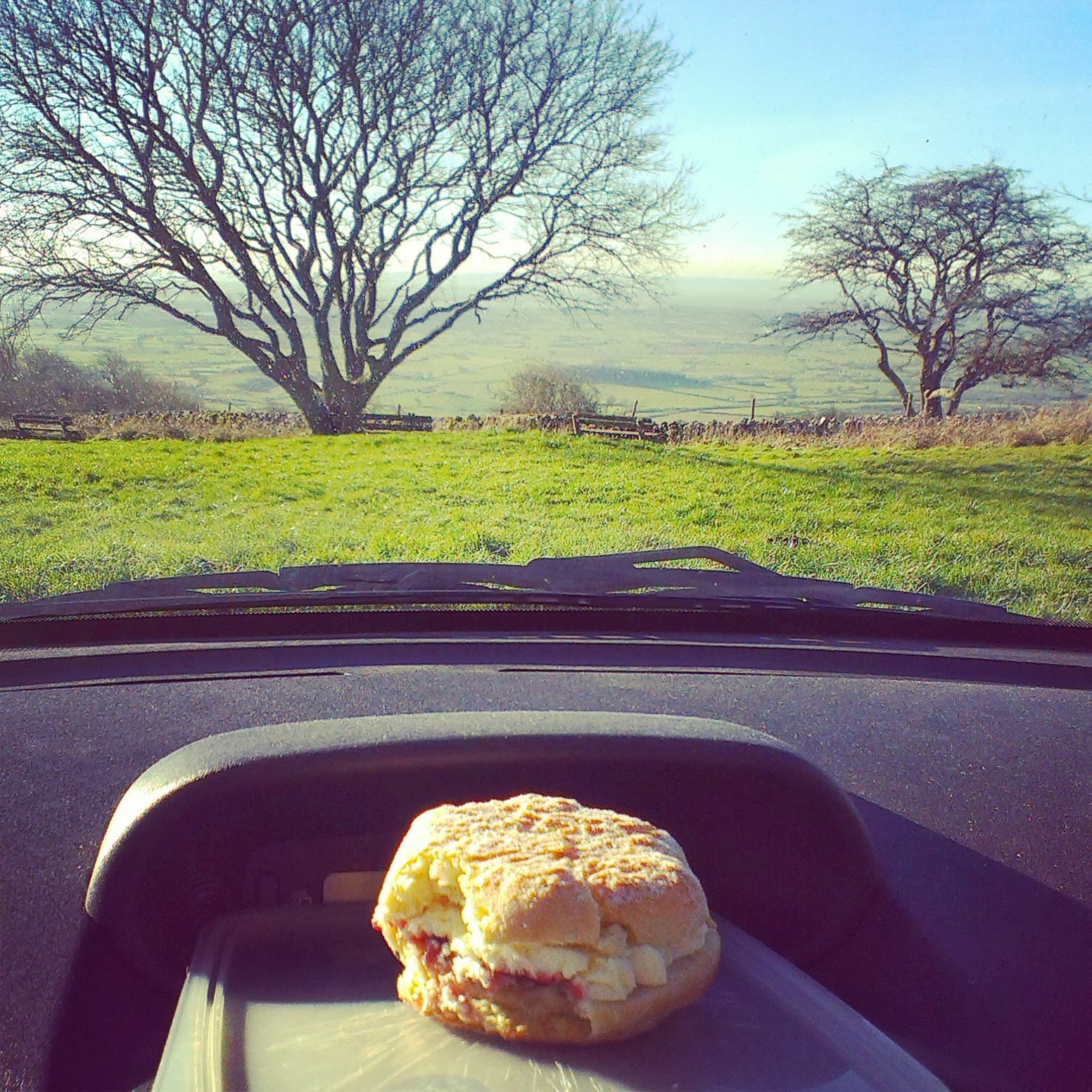 Cream scone at a viewpoint