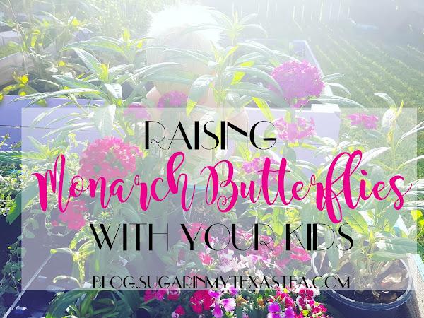 Raising Monarch Butterflies with Your Kids, Part 1
