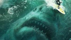 Megalodon Kẻ săn mồi hung tợn nhất trong lịch sử Trái đất