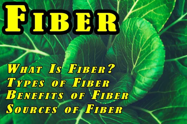 In this article discussed : What Is Fiber, Types of Fiber, Benefits of Fiber, Sources of Fiber and  much ,more ,what is fiber, fiber rich foods, insoluble fiber, soluble fiber foods, dietary fiber, sources of fiber, high fiber fruits, high fiber vegetables, fiber, fiber foods, high fiber foods, high fiber foods list, what foods are high in fiber, high fiber diet,