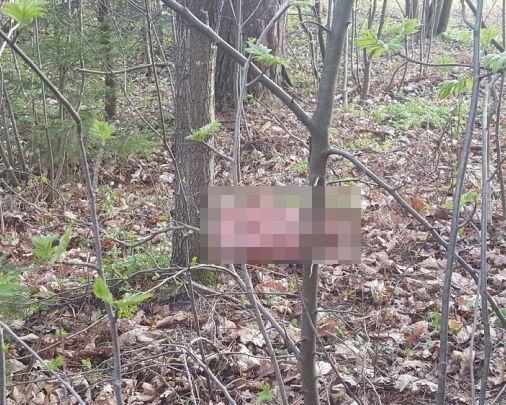 В Уфе местные жители обнаружили останки человека
