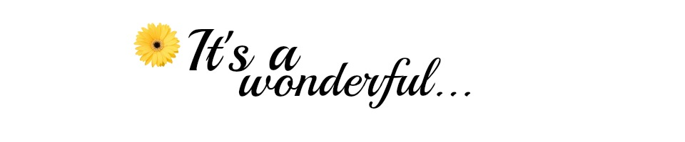 It's A Wonderful...
