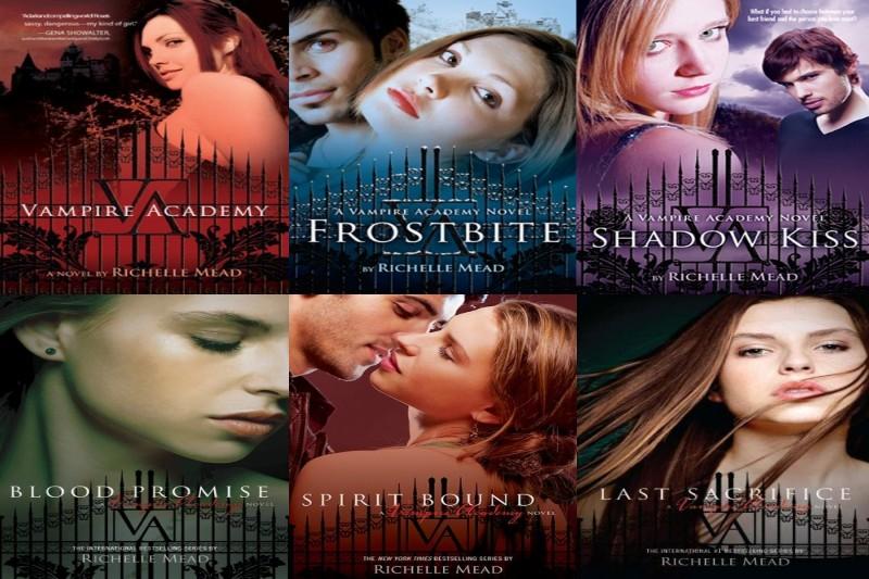 Vampire Academy Buch