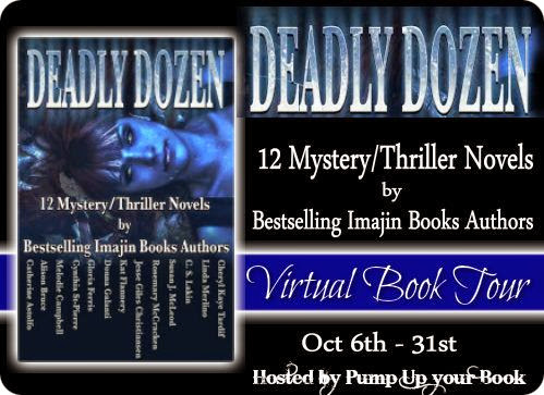 The DEADLY DOZEN Book Bundle Interview