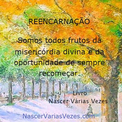 Reencarnação: somos todos frutos da misericórdia divina e da oportunidade de sempre recomeçar. Livro Nascer Várias Vezes
