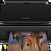 Epson Stylus SX515W Treiber Scannen Download
