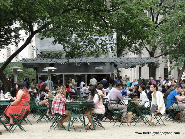 Shake Shack dining area in Madison Square Park in NYC's Flatiron District