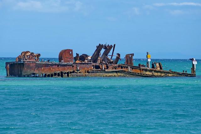 Tangalooma Wrecks Wrack Schiffswrack Moreton Island schnorcheln
