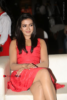 Actress Catherine Tresa Unveils Intex Air Conditioners  0061.jpg