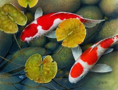 Jenis Tanaman Pemicu Warna Ikan Koi