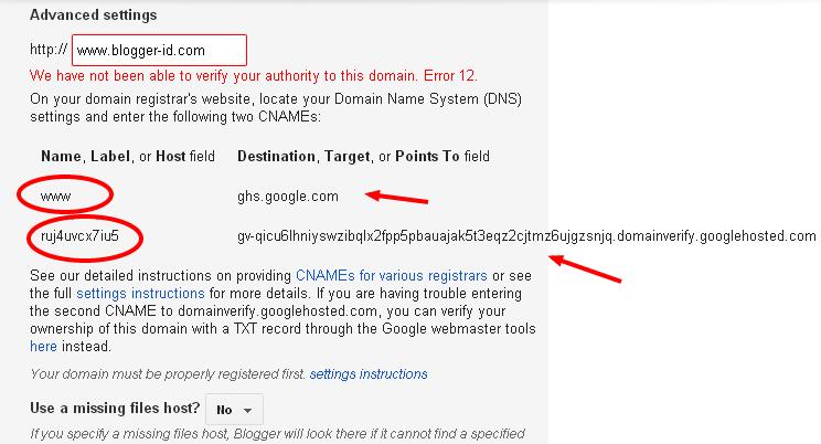 setting domain dot tk