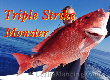 Yeah Triple Strike Monster Red Snapper The Best Moment