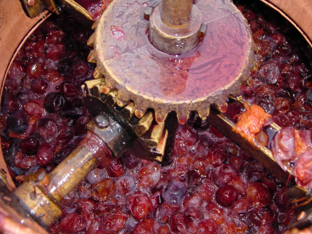 prunes,prune juice,what is prune juice,how are prunes made,what is plums,plums and prunes,health benefits of prune juice,benefits of drinking prune juice