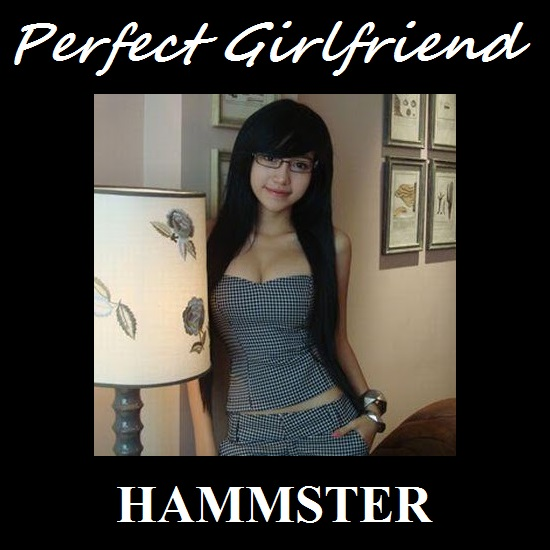 Hammsters Transformation Captions Perfect Girlfriend-1137
