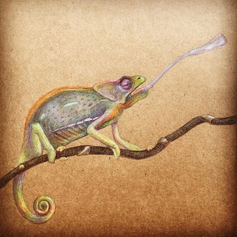 09-Chameleon-Theartakk-www-designstack-co