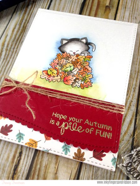 Autumn Cat Card by Guest Designer Tracy Freeman | Autumn Newton Stamp set by Newton's Nook Designs #newtonsnook #handmade