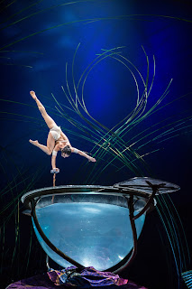 Amaluna water bowl
