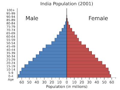 hindistan nüfus piramidi
