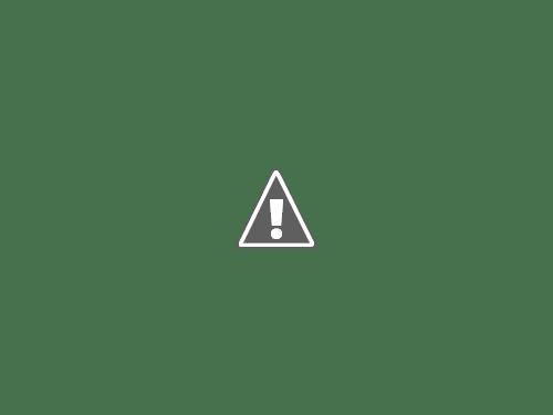 小笄からの富士山