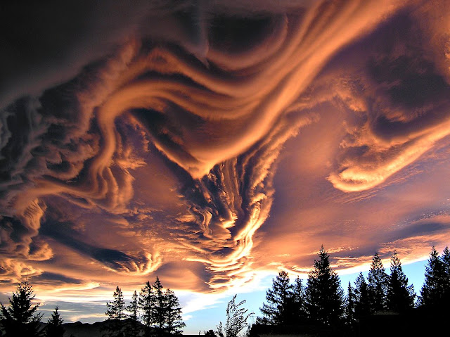 Asperatus Clouds over New Zealand What kind of clouds are these? Although their cause is presently unknown, such unusual atmospheric structures, as menacing as they might seem, do not appear to be harbingers of meteorological doom. Known informally as Undulatus asperatus clouds, they can be stunning in appearance, unusual in occurrence, are relatively unstudied, and have even been suggested as a new type of cloud. Whereas most low cloud decks are flat bottomed, asperatus clouds appear to have significant vertical structure underneath. Speculation therefore holds that asperatus clouds might be related to lenticular clouds that form near mountains, or mammatus clouds associated with thunderstorms, or perhaps a foehn wind - a type of dry downward wind that flows off mountains. Such a wind called the Canterbury arch streams toward the east coast of New Zealand's South Island. This image, taken above Hanmer Springs in Canterbury, New Zealand, in 2005, shows great detail partly because sunlight illuminates the undulating clouds from the side.  Image Credit & Copyright: Witta Priester Explanation: http://apod.nasa.gov/apod/ap130227.html