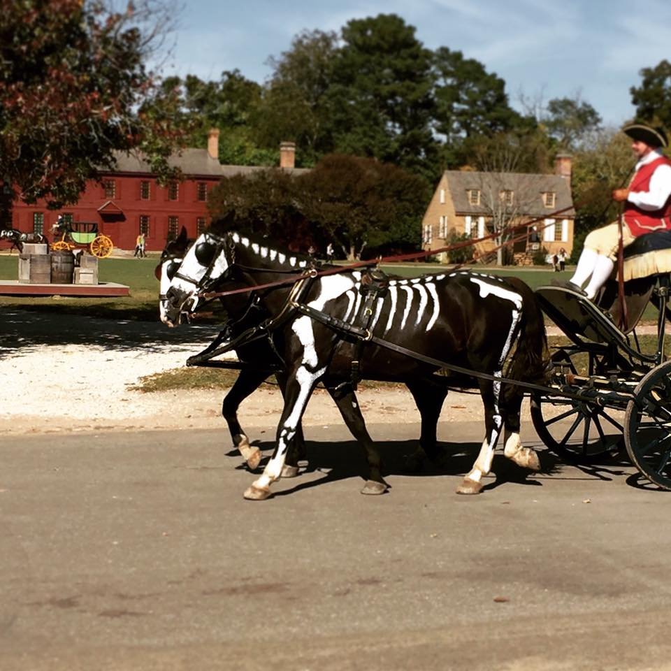 goth gardening ^o^: halloweekend & colonial skeletons